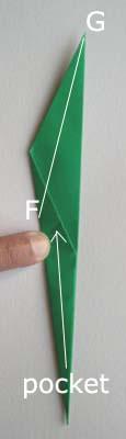 郁金香的折法图解20