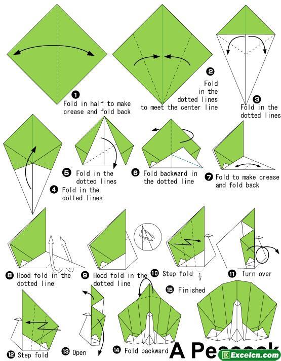 孔雀的折法图解