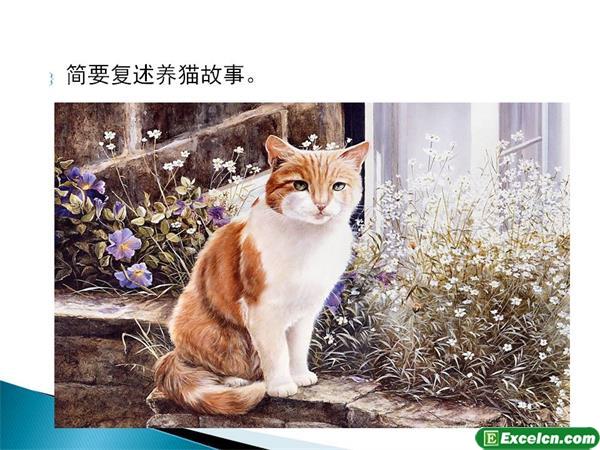 人教版七年级语文下册第26课《猫》课件2
