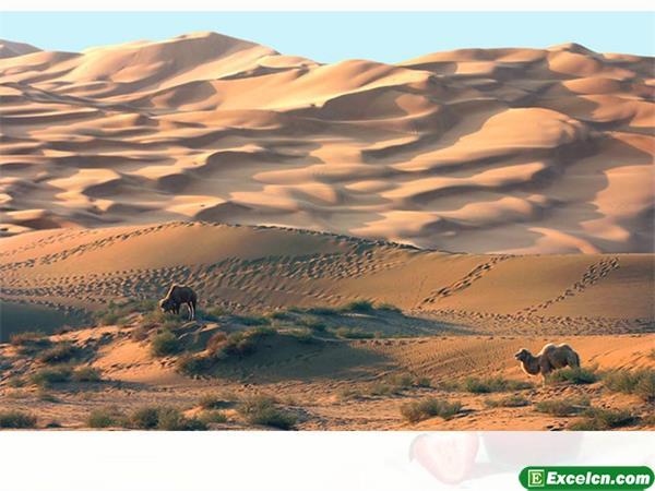 人教版七年级语文下册《在沙漠中心》课件