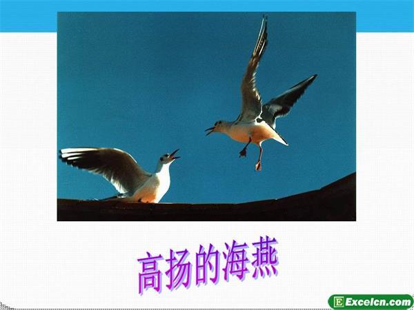 人教版八年级语文下册第9课《海燕》课件2