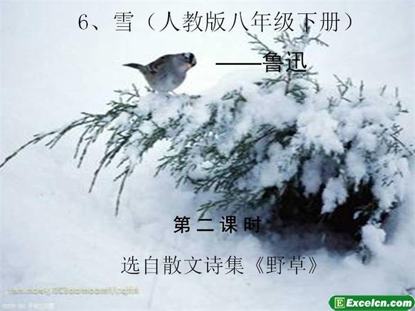 人教版八年级语文下册第6课《雪》ppt课件